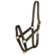 Gatsby Leather Company 203/6 Stable Halter Horse Lg