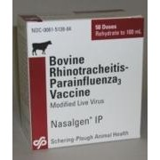 Intervet Vaccine Nasalgen Ip 50Ds