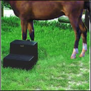 Dan's Saddlery Mounting Step - Double, Black